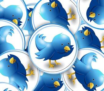 De 5 persoonlijkheidskenmerken van Twitteraars die hun volgers blokkeren